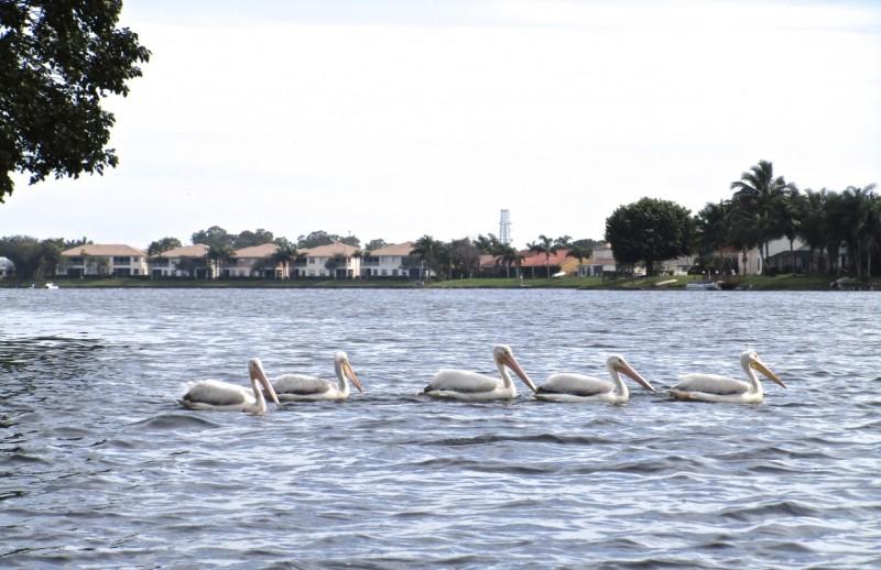 Auch andere waren unterwegs auf dem See.